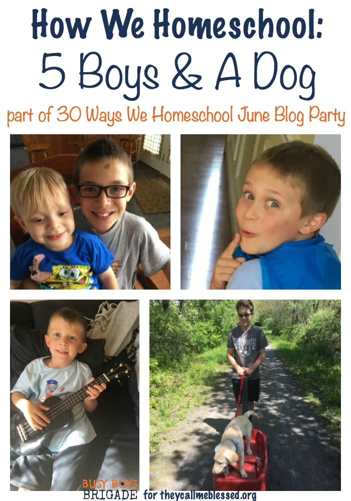 How we homeschool 5 boys is part of 30 Ways of How We Homeschool, a blog party at They Call Me Blessed.
