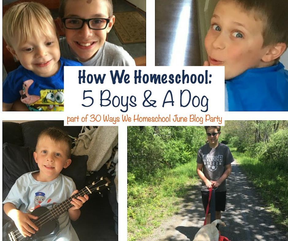 homeschool 5 boys
