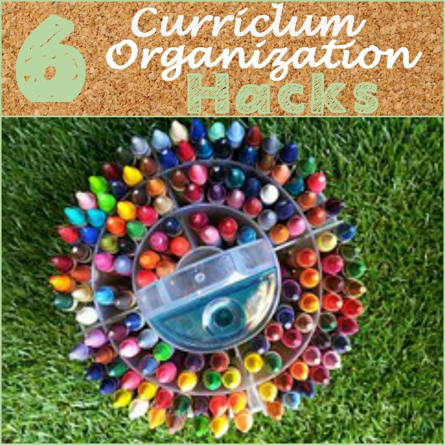 curriculum organization